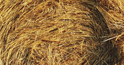 Horse Hay Storage (Cover Image)